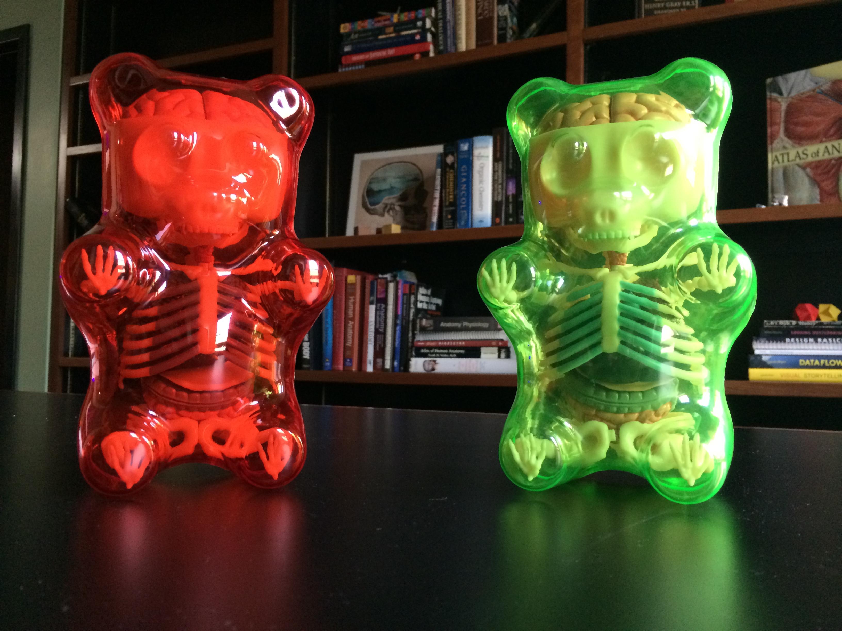 Green Freeny Bear gets a friend | Radius Digital Science Lab